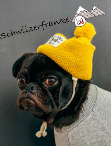 Beste Finanzblogs schweiz und beste Schweizer Finanzblogs